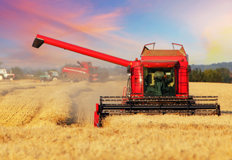 Ferragon_agriculture